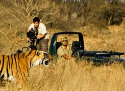 Ranthambore Jeep Safari Booking Instructions